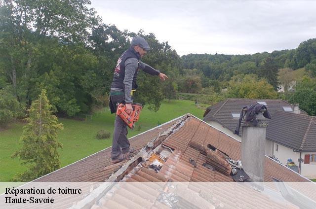 r paration de toiture dans le 74 haute savoie t l. Black Bedroom Furniture Sets. Home Design Ideas