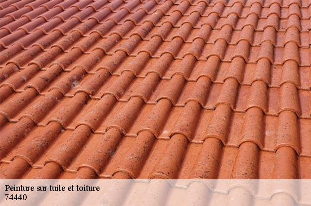 peinture sur tuile et toiture la riviere enverse t l. Black Bedroom Furniture Sets. Home Design Ideas