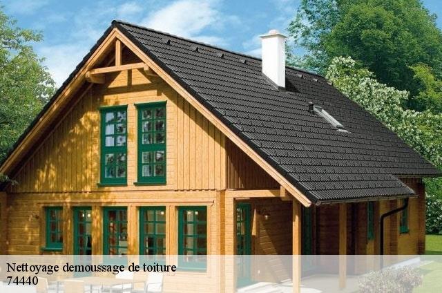 nettoyage de toiture la riviere enverse t l. Black Bedroom Furniture Sets. Home Design Ideas