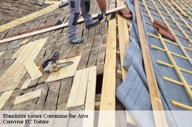 etanch it toiture contamine sur arve t l. Black Bedroom Furniture Sets. Home Design Ideas